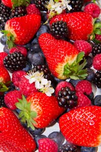 berries-xs