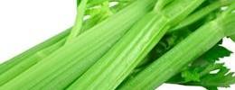 celery-xs